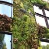 Les jardins sur les toits de Paris