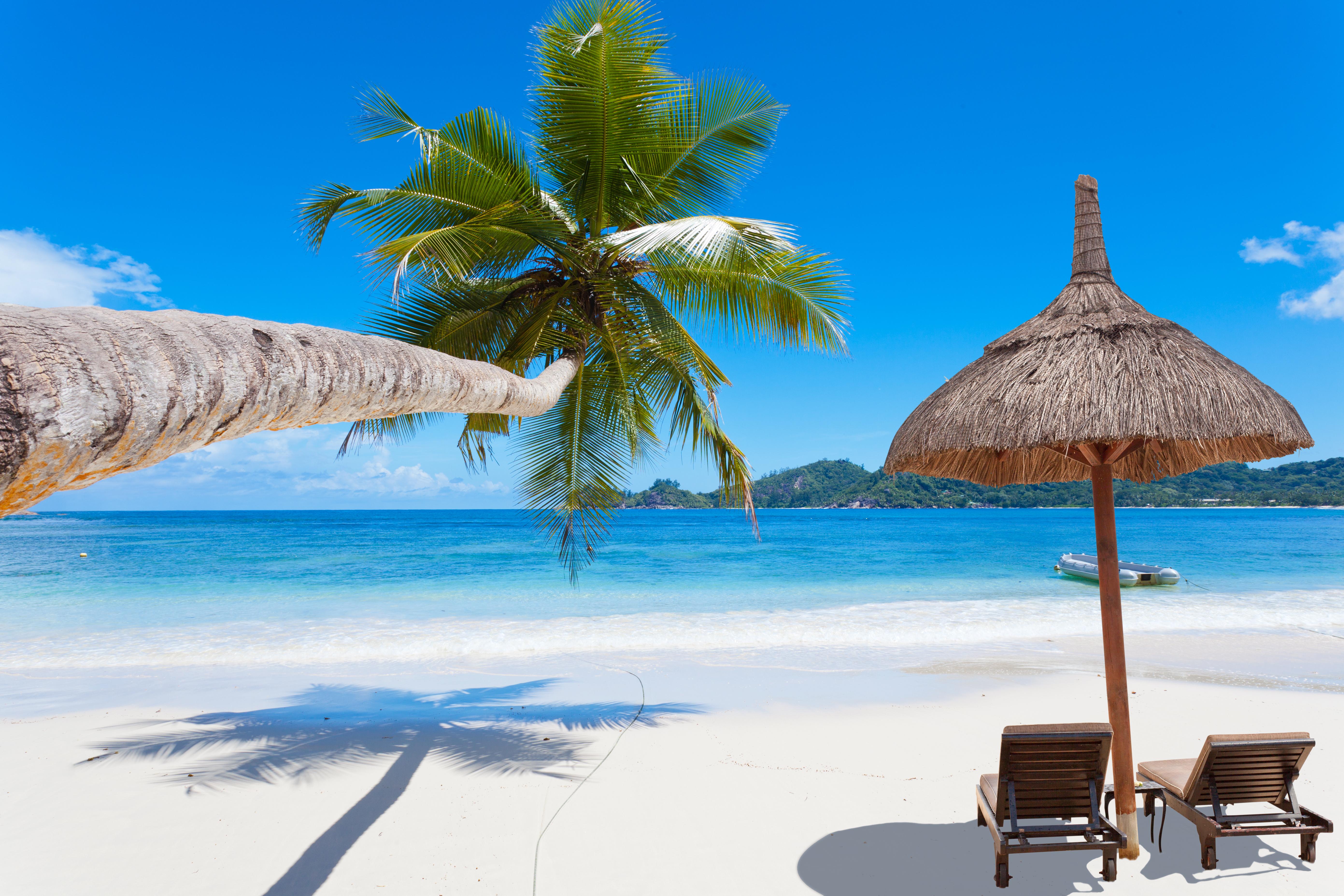 Les Seychelles Le Soleil Le Sable Et La Transition