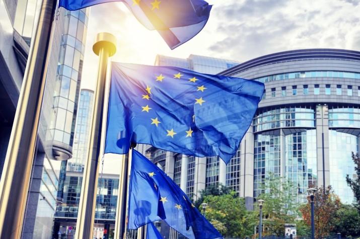 Décryptage : comment se positionnent les favoris aux élections européennes sur la transition énergétique ?