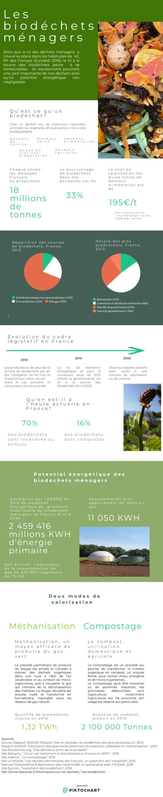 biodéchets ménagers - infographie EnegyStream