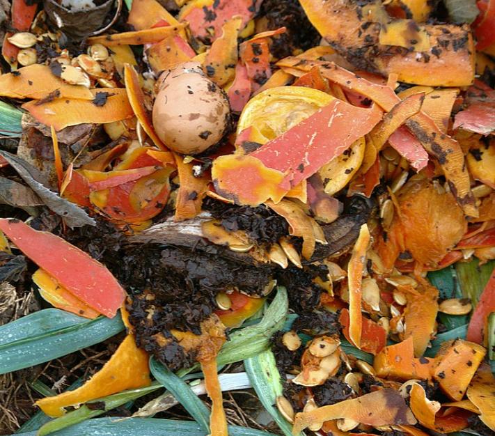 Biodéchets, de la poubelle à la valorisation énergétique