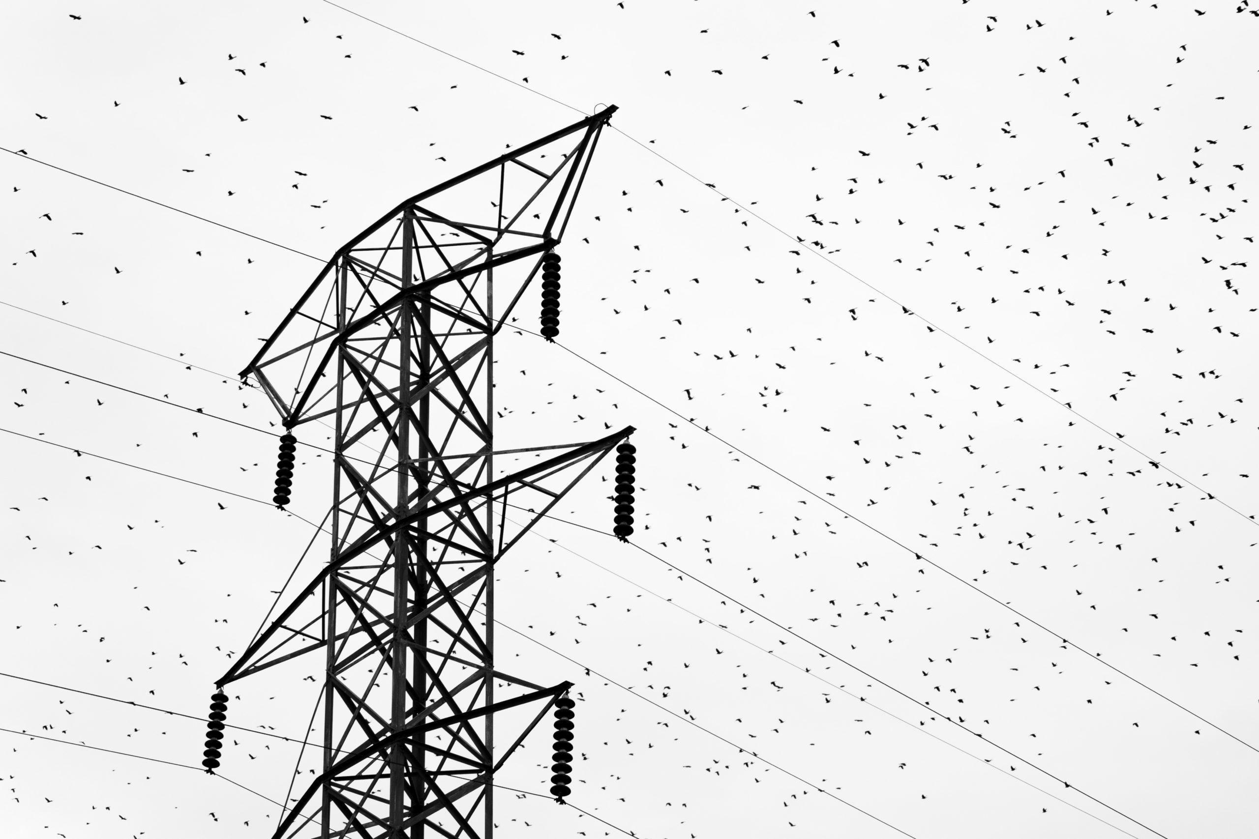 Transition énergétique : le jeu d'équilibriste de RTE pour adapter le réseau de transport d'électricité