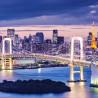 Tokyo et sa banlieue : le laboratoire de la Smart City
