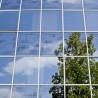 Série – Le Management Environnemental : enjeux et opportunités pour les entreprises françaises