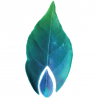 [Interview] [COP21] Le biométhane débarque dans les réseaux de transport de gaz