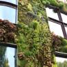 Agro Housing : Cultivons notre jardin !